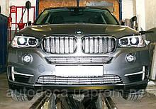 Декоративно-защитная сетка радиатора BMW X5 (F15) 2014-  фальшрадиаторная решетка, бампер
