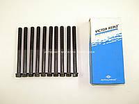 Болты головки двигателя на Фолльксваген ЛТ 2.8TDI (125/135 л.с.) 1996-2002 REINZ (Германия) 143217801