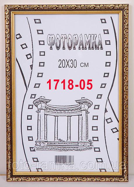 Фоторамка 20х30    1718