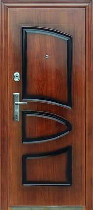 Стальные входные двери AAA богатырь 008 лак , фото 2