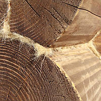 Конопатка сруба, деревянного дома, фото 1