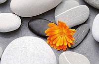 Фотообои в салоны красоты Сердце из камней