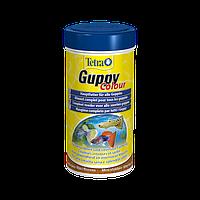 Tetra Guppy Colour Сбалансированный корм для всех видов гуппи - способствует окрасу