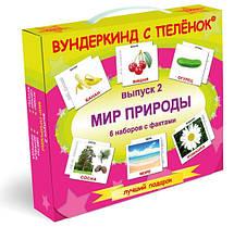"""""""Мир природы"""" карточки по Доману"""