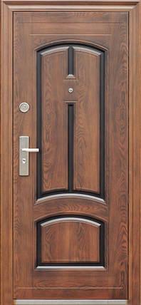 Входные двери ААА Лантан TF 025 дешево, фото 2