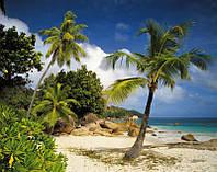 Фотообои бумажные на стену 368х254 см 8 листов: Пальмы, пляж, море. Komar 8-885