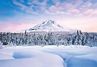 Красивые фотообои на стену Зимняя сказка размер 366 х 254 см