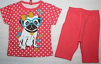 Комплект для девочек: футболка и бриджи 9,12,18 мес
