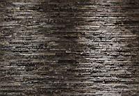 Фотообои бумажные на стену 368х254 см 8 листов: Кора дерева. Komar 8-700