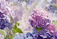 Фотообои бумажные на стену 368х254 см 8 листов: Цветы гортензии Отакса. Komar 8-705