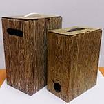 Коробка 5л и 3л Bag in Вoх  с печатью в один цвет (Дерево)