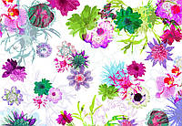 Фотообои бумажные на стену 368х254 см 8 листов: Цветы Парижа. Komar 8-911