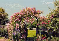 Фотообои бумажные на стену 368х254 см 8 листов: Сад цветов. Komar 8-936
