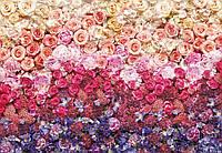 Фотообои бумажные на стену 368х254 см 8 листов: Цветы - розы, пионы, гортензии. Komar 8-965