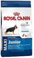 Royal Canin Maxi Junior 15 кг