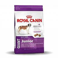 Royal Canin Giant Junior 15 кг