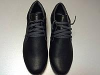 Классические кожаные туфли с открытой перфорацией