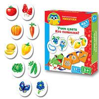 Развивающая игра Клуб дошкольников Умнички Изучаем цвета, кто появился  Vladi Toys VT 1306-07