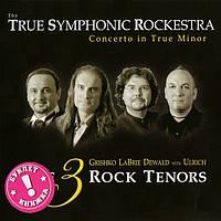 Музыкальный сд диск TRUE SYMPHONIC ROCKESTRA Concerto in true minor (2008) (audio cd)