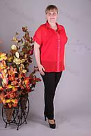 Блуза 2904-459/3 шифон больших размеров оптом