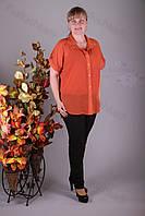 Блуза 2912-459/3 шифон больших размеров оптом