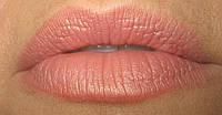 Помада для губ увлажняющая (оттенок апельсин) Deliplus