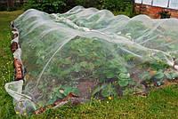 Защитная сетка от птиц белая повышенной прочности 4x10 м