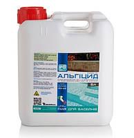 Химия для бассейна Средство против водорослей, бактерий и микробов PG-42 5л Италия