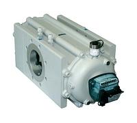 Газовый роторный счетчик Itron Delta G100 DN80
