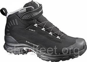 Мужские ботинки Salomon Deemax 2 Dry 107655