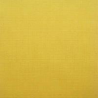 Рулонные шторы Len. Тканевые ролеты Лен 72.5, Желтый 0858