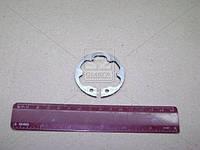 Кольцо стопорное ступицы муфты КПП 5-ст. ГАЗ 3110 (ГАЗ). 3105-1701034