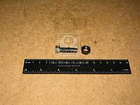 Винт регулировочный клапана ГАЗ 53 с гайкой (ЗМЗ). 511.1007074