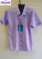 Рубашка для мальчика х/б с коротким рукавом 2, уп. 6 шт., рост от 7 до 12 лет