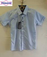 Рубашка для мальчика х/б с коротким рукавом 6, уп. 6 шт., рост от 7 до 12 лет