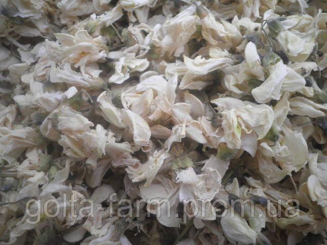 Акация белая цветки 50 грамм.
