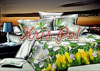 Комплект постельного белья евро 200*220 хлопок  (5475) TM KRISPOL Украина