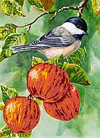 Схема для вышивки бисером POINT ART Синица на яблоках, размер 27х36 см