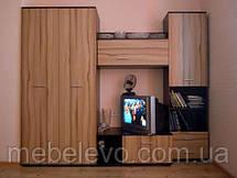 Гербор  гостиная Ламия  2605х1940х515мм венгем магия + палио , фото 3