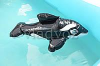 Надувная игрушка intex 58590 черная касатка