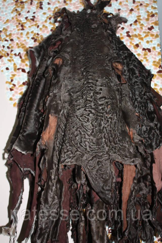 каракульча набор на шубу, пальто, жилет