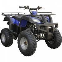 Квадроцикл SP150-4 (с задним ходом, колеса 23*7-10  / 22*10-10, передние и задние дисковые тормоза)