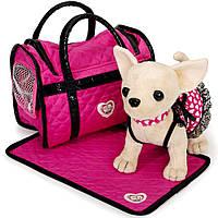 Собачка Чихуахуа Розовая мечта