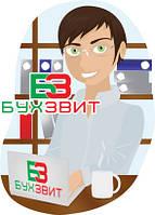 Организация бухгалтерского учета в 1С