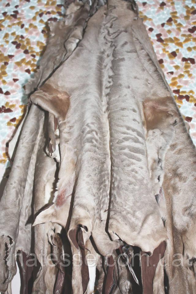 каракульча наборы для шубы пальто жилета