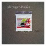 Сульфат цинка (цинк сернокислый) 100 г, фото 2