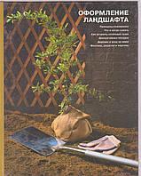 Оформление ландшафта. Энциклопедия домашнего мастера