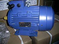 Электродвигатель АИР100L2  5,5 кВт 3000 об/мин