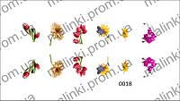 Фото дизайн для ногтей - водные наклейки для ногтей De Luxe