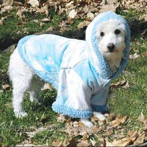 Doggyduds A BIT CHILLY пальто, одежда для собак, XS, голубой/белый